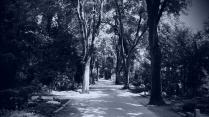 Hauptweg Neuss